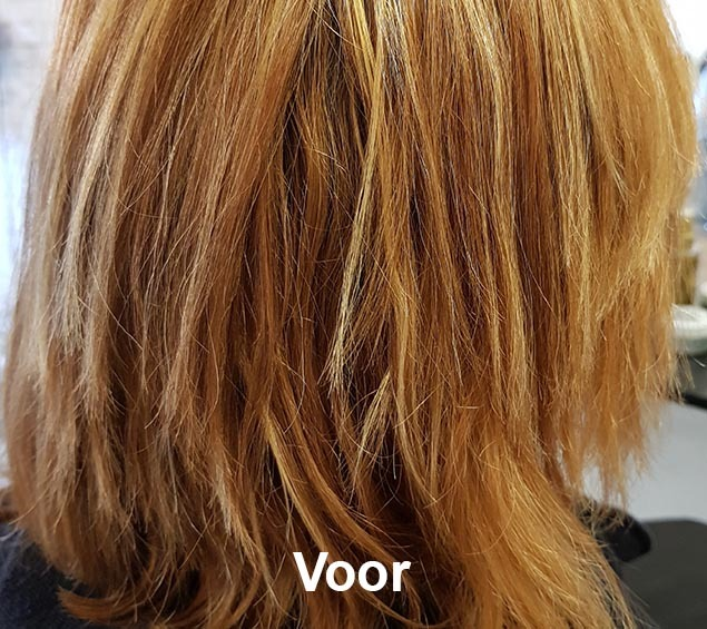 Haarstijl Inge - Trainingen - Advanced Blonde 2019 - Kadus Professional foto 3 voor
