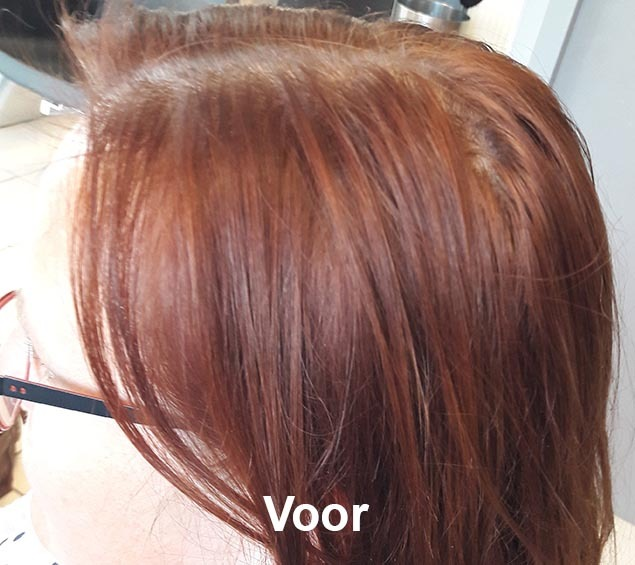 Haarstijl Inge - Trainingen - Demi Permanent Color 2017 - Kadus Professional foto 2 voor