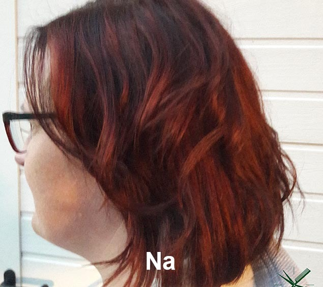 Haarstijl Inge - Trainingen - Demi Permanent Color 2017 - Kadus Professional foto 5 na