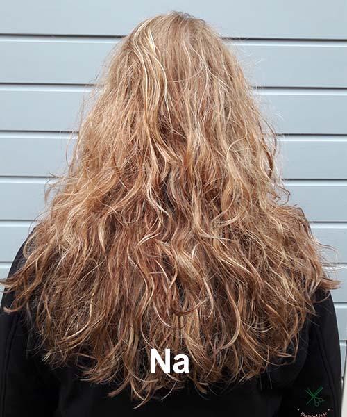 Haarstijl Inge - Voorbeelden van kapsels - hair style 1 na