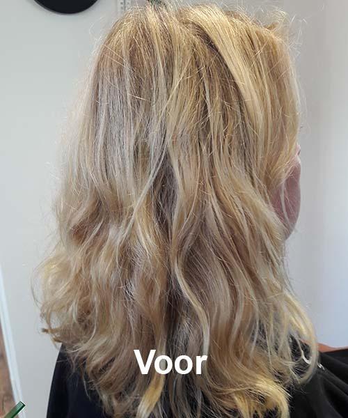 Haarstijl Inge - Voorbeelden van kapsels - hair style 2 na