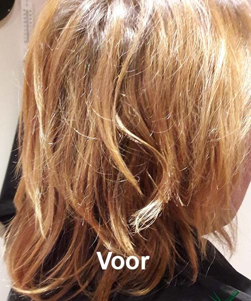 Haarstijl Inge - Voorbeelden van kapsels - hair style 5 voor